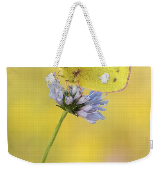 Pale Clouded Yellow Butterfly On Flower Weekender Tote Bag