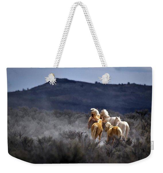 Palomino Buttes Band Weekender Tote Bag