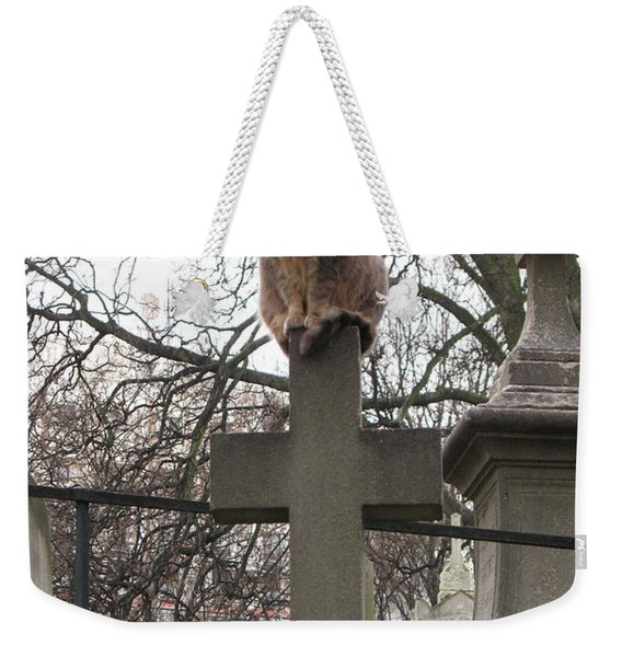 Paris Cemetery Cats - Pere La Chaise Cemetery - Wild Cats On Cross Weekender Tote Bag