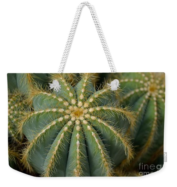 Weekender Tote Bag featuring the photograph Parodia Magnifica by Scott Lyons
