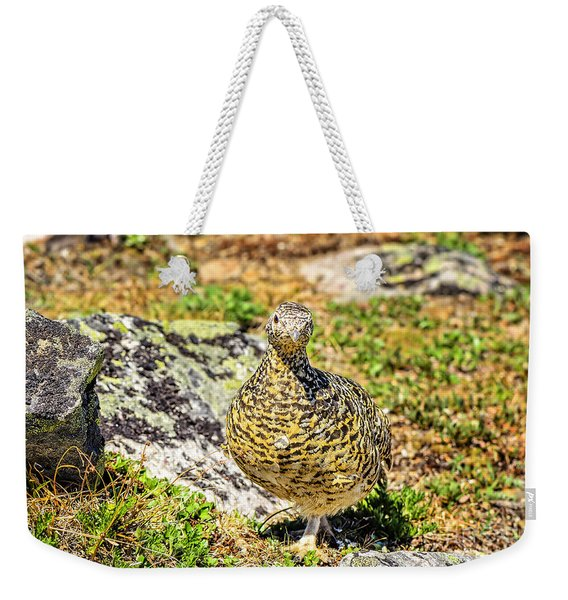 Partridge 1 Weekender Tote Bag