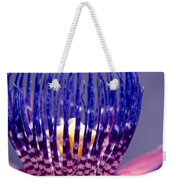 Passiflora Alata - Ruby Star - Ouvaca - Fragrant Granadilla -  Winged-stem Passion Flower Weekender Tote Bag