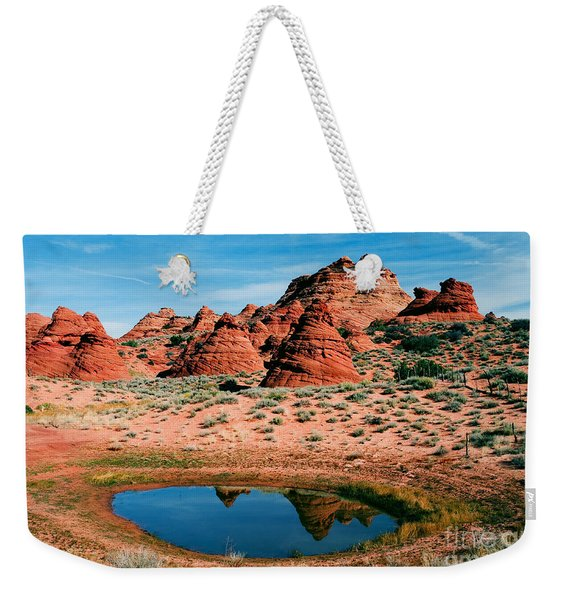 Paw Hole Reflections Weekender Tote Bag