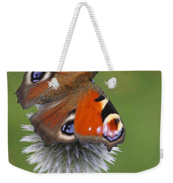 Peacock Butterfly Netherlands Weekender Tote Bag
