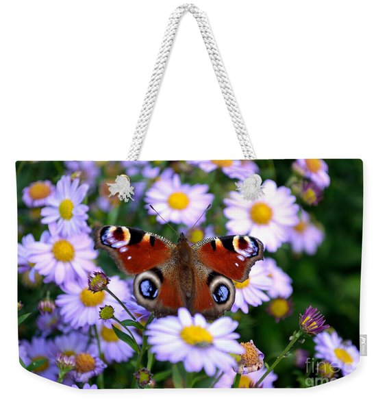 Weekender Tote Bag featuring the photograph Peacock Butterfly Perched On The Daisies by Scott Lyons
