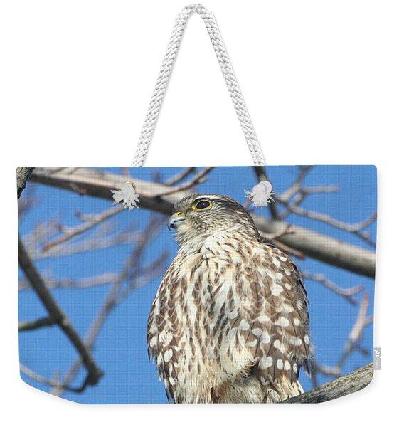 Perched Merlin Weekender Tote Bag