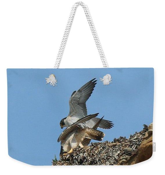 Peregrine Falcons - 4 Weekender Tote Bag