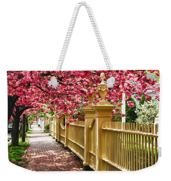 Weekender Tote Bag featuring the photograph Perfect Time For A Spring Walk by Jeff Folger