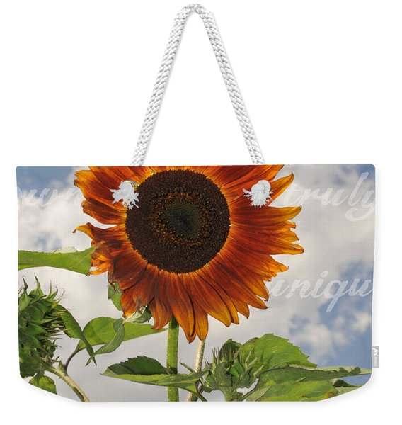 Perfection In The Eye Of The Beholder Weekender Tote Bag