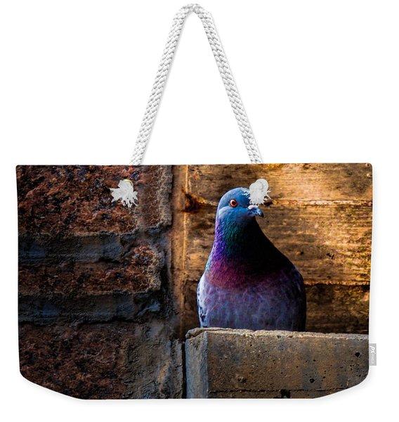 Pigeon Of The City Weekender Tote Bag