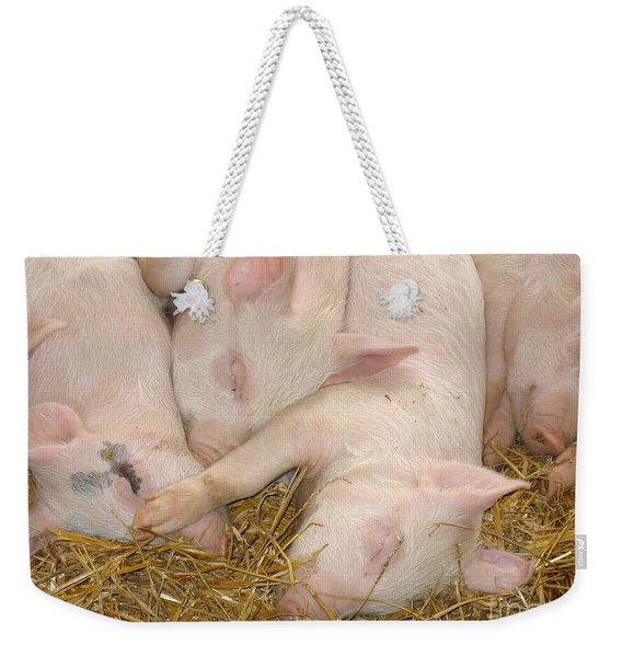 Piggy Feet In Face Weekender Tote Bag