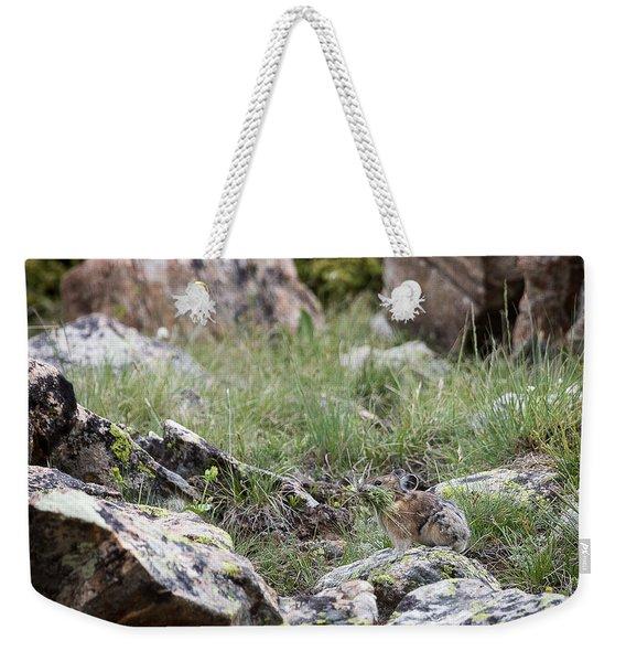 Pika  Weekender Tote Bag