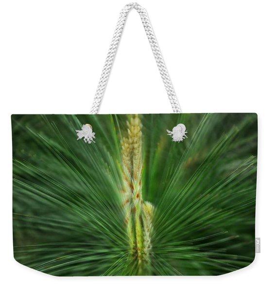 Pine Cone And Needles Weekender Tote Bag