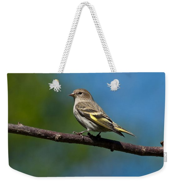 Pine Siskin Perched On A Branch Weekender Tote Bag
