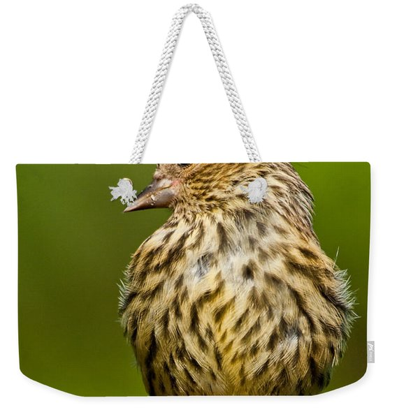 Pine Siskin With Yellow Coloration Weekender Tote Bag