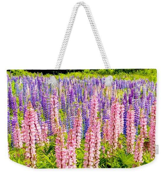Pink And Purlpe Weekender Tote Bag