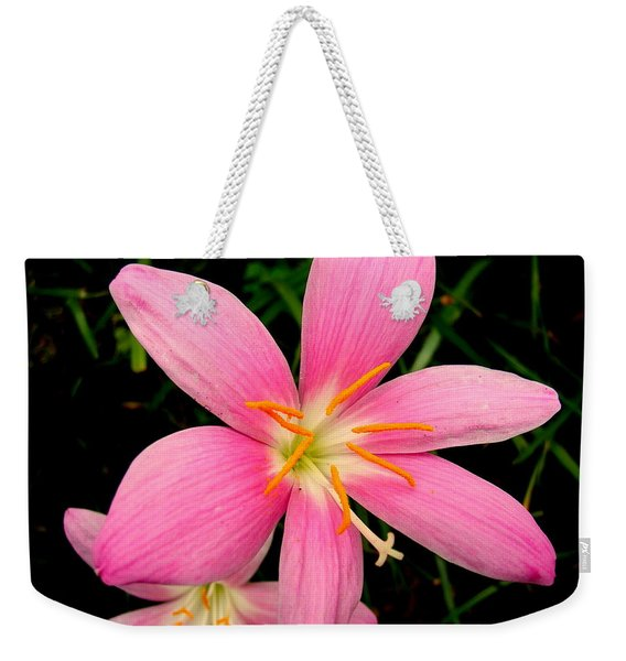 Weekender Tote Bag featuring the photograph Pink Day Lily by Cynthia Amaral