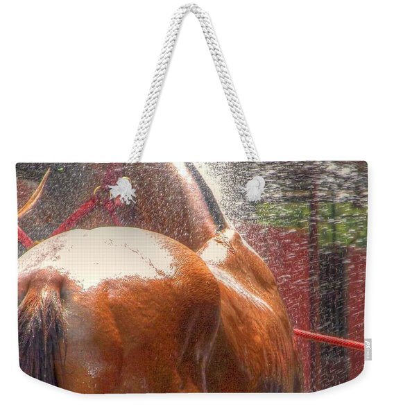 Polo Pony Shower Hdr 21061 Weekender Tote Bag