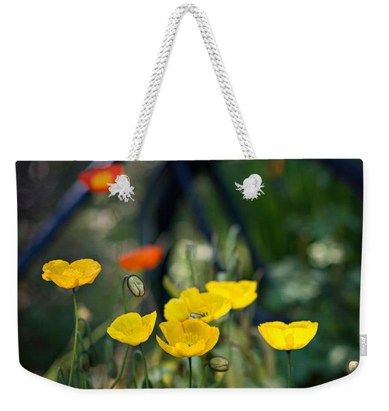 Weekender Tote Bag featuring the photograph Poppies by Doug Gibbons