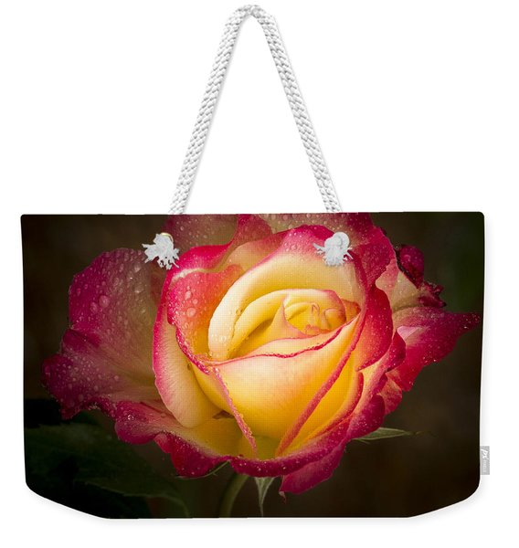 Portrait Of A Double Delight Rose Weekender Tote Bag