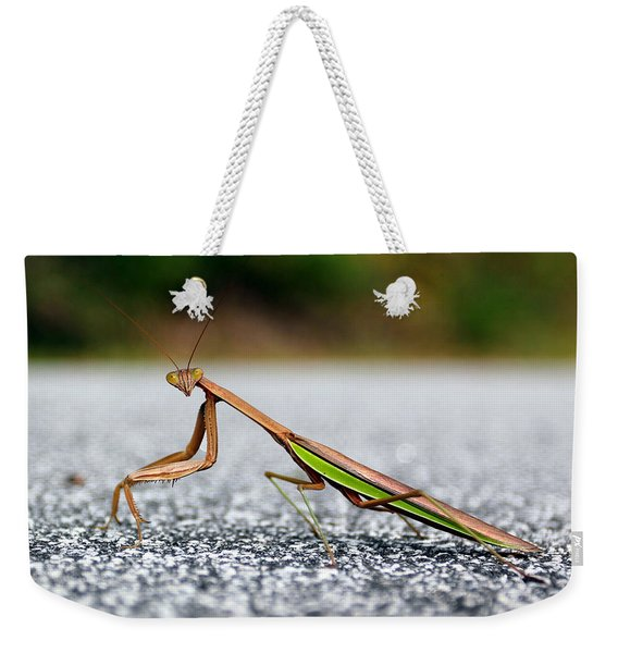 Posing For The Camera Weekender Tote Bag