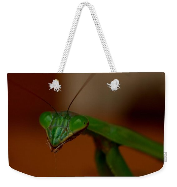 Praying Mantis Closeup Weekender Tote Bag
