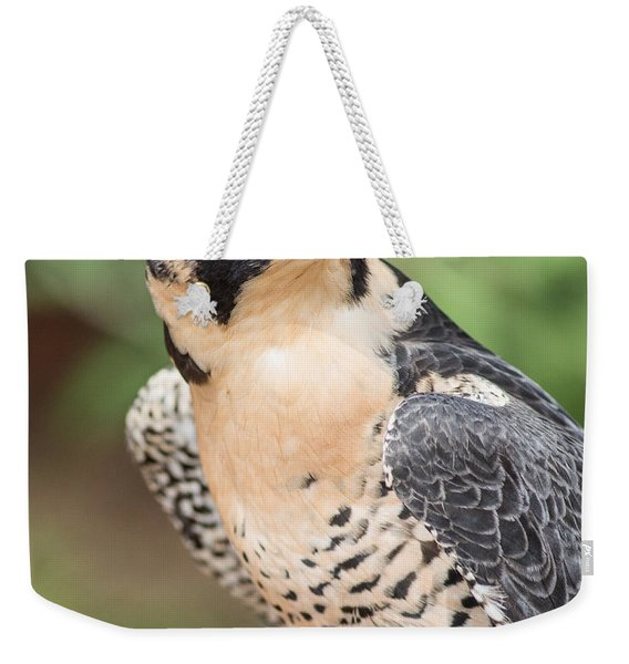 Predator Weekender Tote Bag