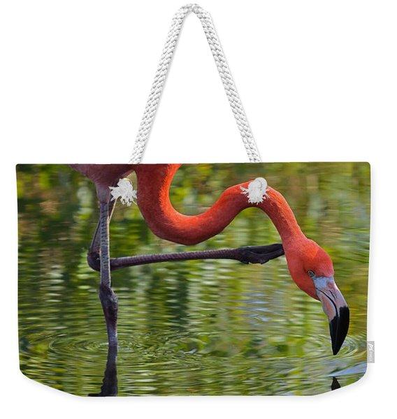 Pretty Flamingo Weekender Tote Bag