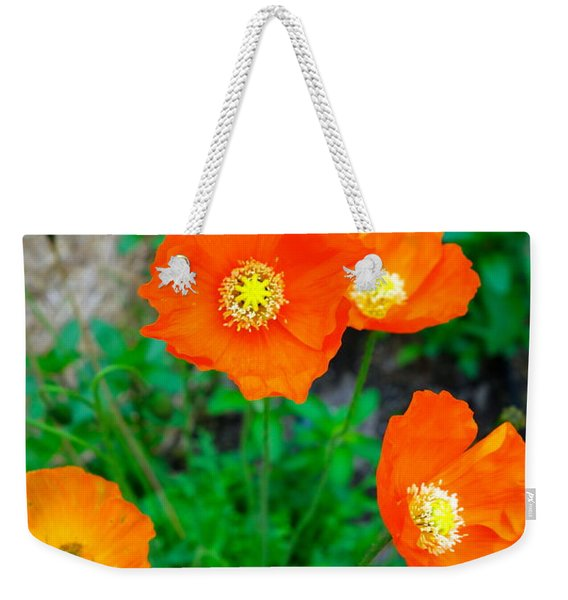 Pretty In Orange Weekender Tote Bag