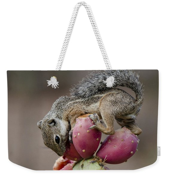 Prickly Pear Breakfast  Weekender Tote Bag