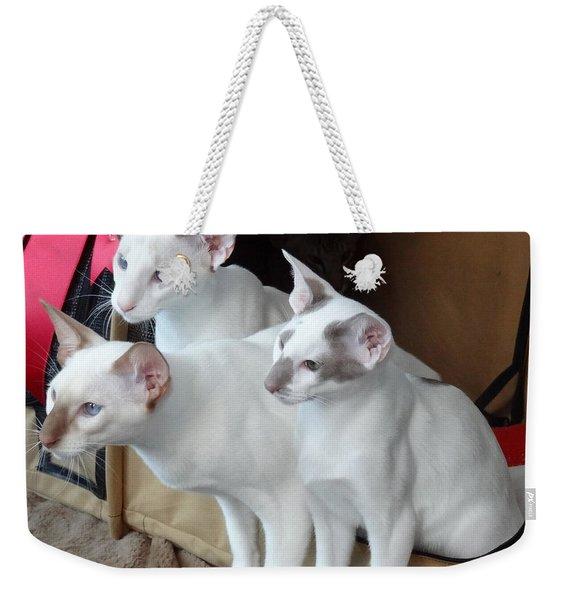 Prize Winning Triplets Weekender Tote Bag