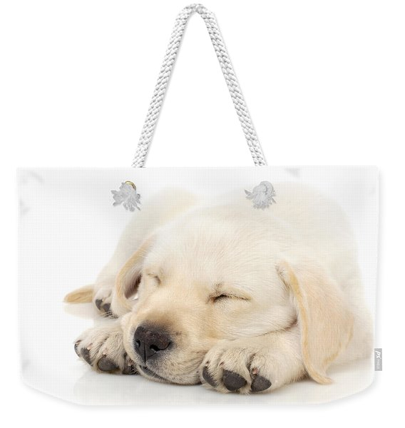 Puppy Sleeping On Paws Weekender Tote Bag