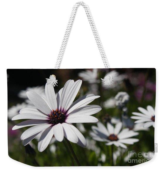 Purple Daisies 2 Weekender Tote Bag