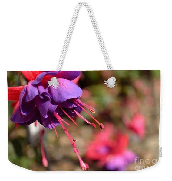 Weekender Tote Bag featuring the photograph Purple Fuchsia by Scott Lyons