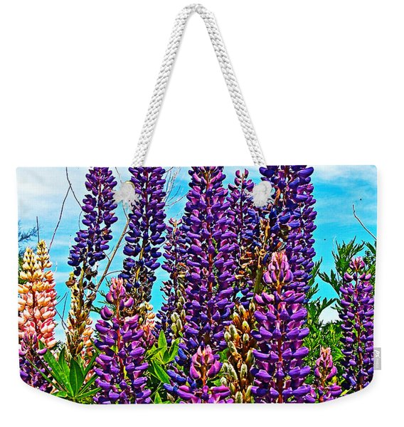 Purple Lupine Along Confederation Trail-prince Edward Island  Weekender Tote Bag