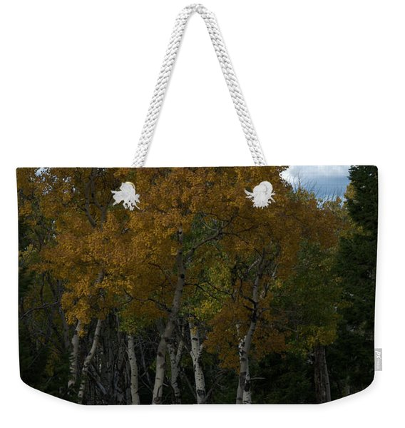 Quaking Aspen Weekender Tote Bag