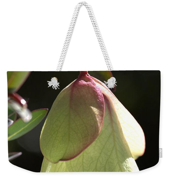 Qualup Bell Flower  Weekender Tote Bag