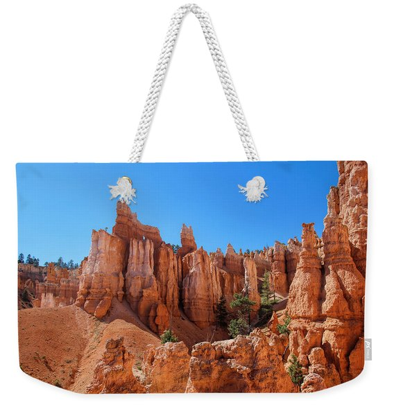 Weekender Tote Bag featuring the photograph Queens Garden Window by Jemmy Archer