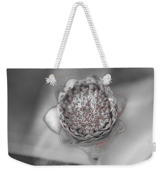 Quicksilver Weekender Tote Bag
