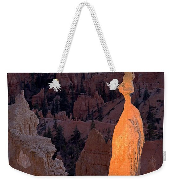 Rabbit Sunset Point Bryce Canyon National Park Weekender Tote Bag