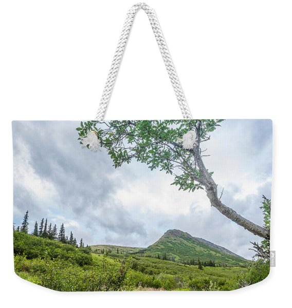 Weekender Tote Bag featuring the photograph Rainy Evening On A Mountain Stream by Tim Newton
