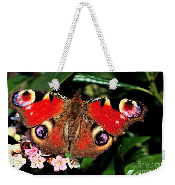 Weekender Tote Bag featuring the photograph Red Butterfly In The Garden by Jeremy Hayden
