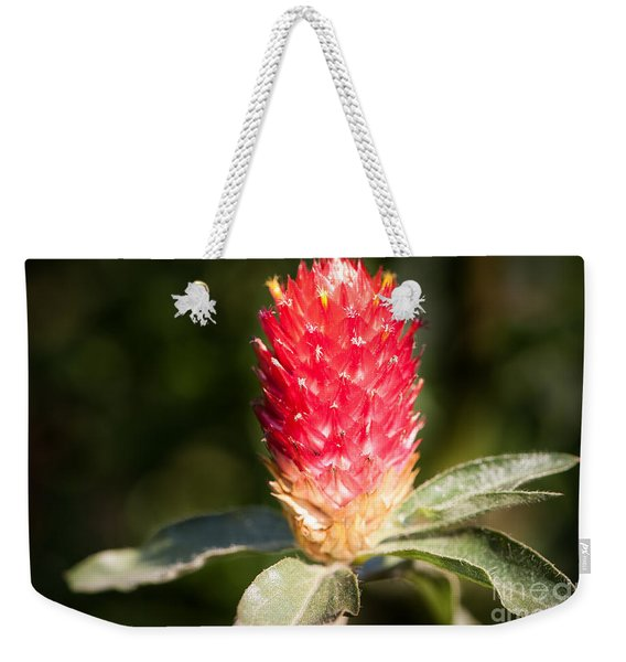 Weekender Tote Bag featuring the photograph Red Flower by John Wadleigh