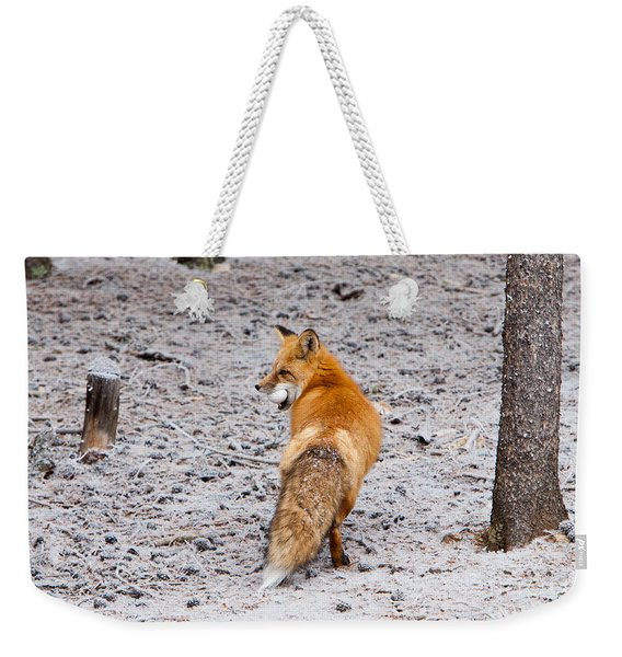 Weekender Tote Bag featuring the photograph Red Fox Egg Thief by John Wadleigh