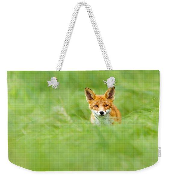 Red Fox In A Sea Of Green Weekender Tote Bag
