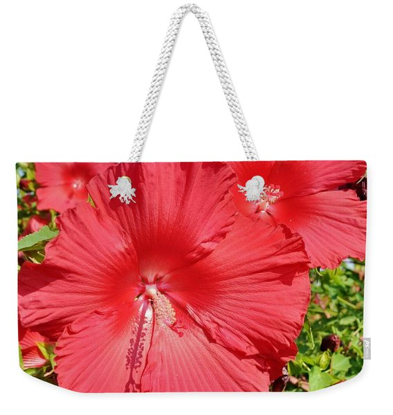 Weekender Tote Bag featuring the photograph Red Hibiscus by Kim Bemis