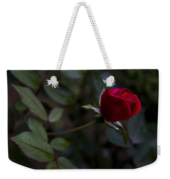 Red Knockout Rose Weekender Tote Bag