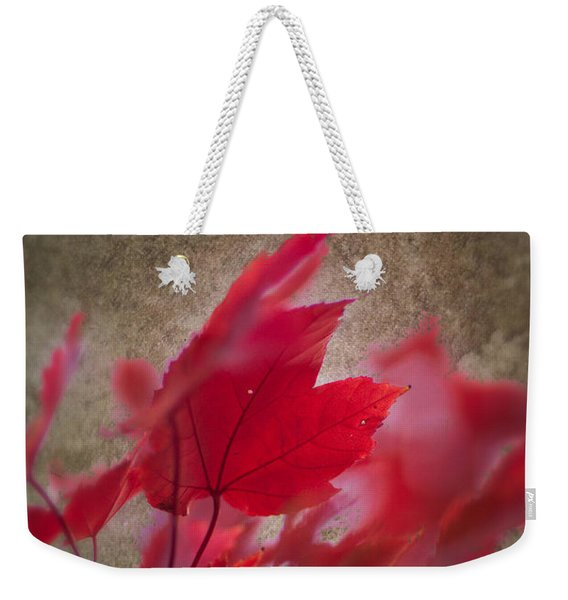 Weekender Tote Bag featuring the photograph Red Maple Dreams by Jeff Folger