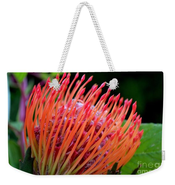 Weekender Tote Bag featuring the photograph Red Pin Cushion by Scott Lyons
