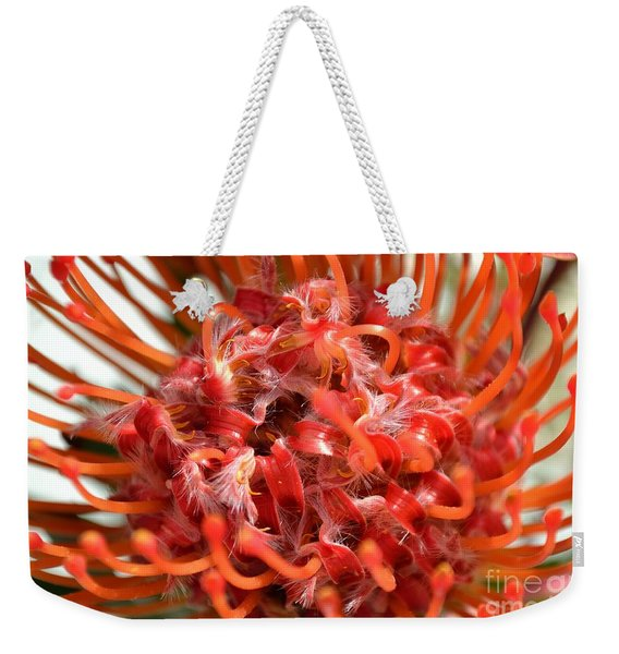Weekender Tote Bag featuring the photograph Red Pincushion Close Up by Scott Lyons